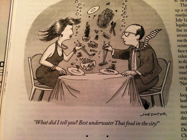 2013 05 08 new yorker thai food cartoon