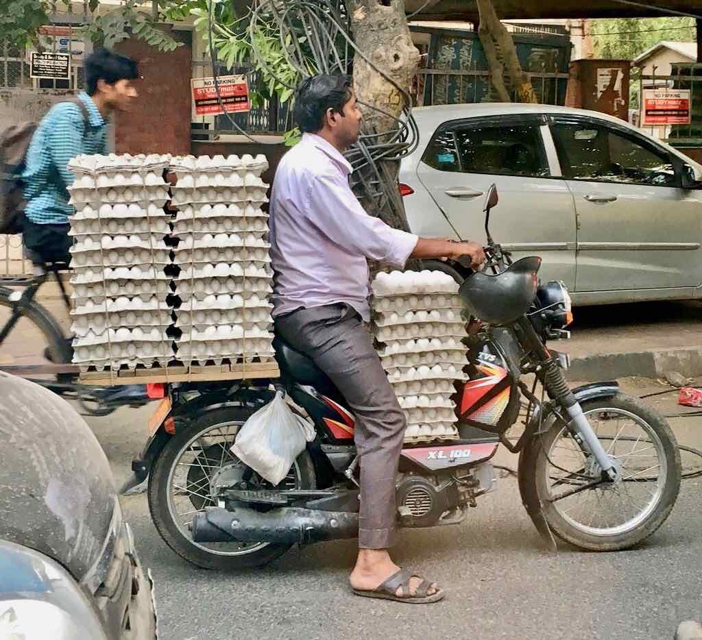 carrying eggs in delhi